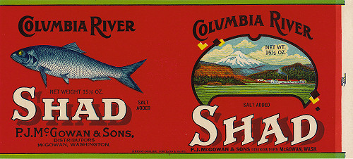 Image, McGowan Shad Label, click to enlarge