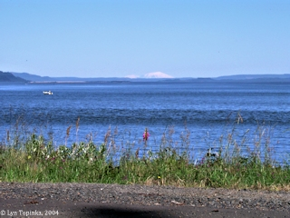 Image, 2004, Mount Adams and Mount St. Helens, from Point Ellice, Washington, click to enlarge