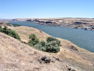 Image, 2003, Biggs Bridge and upstream Columbia River as seen from Maryhill Museum, click to enlarge