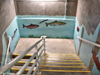 Image, 2005, Stairwell, Bonneville Dam, click to enlarge