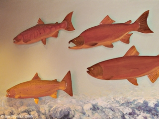 Image, 2005, Bonneville Dam Fish Window Display, click to enlarge