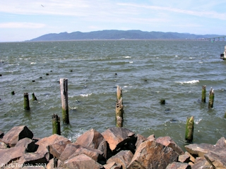 Image, 2003, Across the Columbia River towards Point Ellice, Washington, click to enlarge