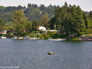 Image, 2005, Horseshoe Lake, Woodland, Washington, click to enlarge