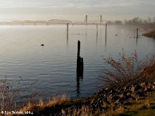 Image, 2003, Interstate 5 Bridge and fog, click to enlarge