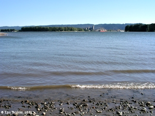 Image, 2003, Kelley Point and mouth of the Willamette River, Oregon, from Blurock Landing, Washington, click to enlarge