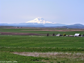 Image, 2004, Klickitat County, click to enlarge
