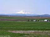 Image, 2004, Mount Adams, Washington, from near Goldendale