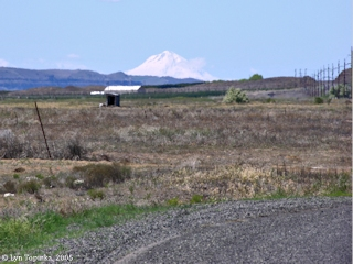 Image, 2005, Mount Hood, Oregon, as seen from Roosevelt, Washington, click to enlarge