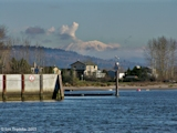 Image, 2005, Mount St. Helens from Willow Grove Beach