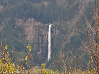 Image, 2005, Multnomah Falls, Oregon, upper falls, from Prindle, Washington, click to enlarge