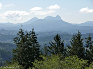 Image, 2005, Saddle Mountain from Coxcomb Hill, click to enlarge