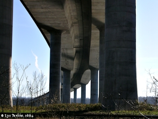 Image, 2004, Underneath the Interstate 205 Bridge, click to enlarge