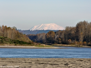 Image, 2004, Wallace Island with Mount St. Helens, click to enlarge