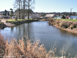 Image, 2004, Clatskanie River from Clatskanie City Park, Oregon, click to enlarge