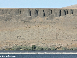Image, 2004, Washington banks from upstream McNary Dam, from overlook, click to enlarge