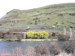 Image, 2004, Deschutes River State Park from Heritage Landing, click to enlarge