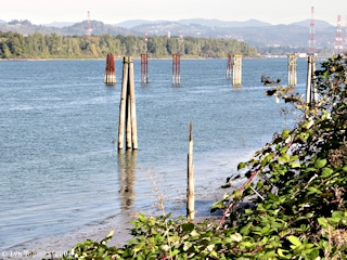 Image, 2004, Lady Island, Washington, from Chinook Landing, Oregon, click to enlarge
