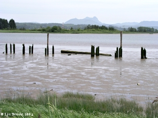 Image, 2004, Saddle Mountain across Youngs Bay, Oregon, click to enlarge