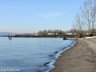 Image, 2004, Wintler Park, looking downstream, click to enlarge