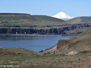 Image, 2005, Celilo area and Mount Hood, Oregon, click to enlarge