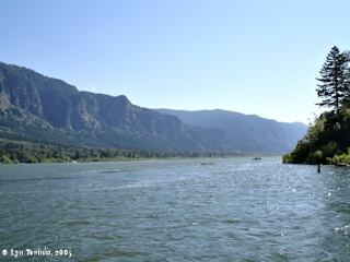 Image, 2005, Columbia River downstream from Skamania Landing, click to enlarge