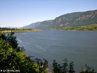 Image, 2005, Columbia River upstream from Skamania Landing, click to enlarge
