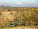 Image, 2005, Sauvie Island and Mount St. Helens