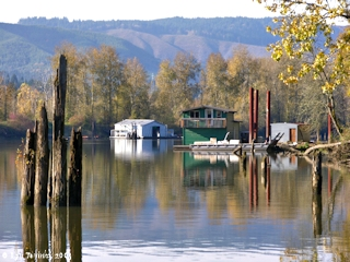 Image, 2005, Multnomah Channel from Sauvie Island Boat Ramp, Sauvie Island, click to enlarge