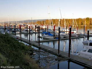 Image, 2004, View from public dock, St. Helens, Oregon, click to enlarge