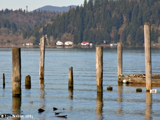 Image, 2005, Looking across the Columbia River, Mayger, Oregon, click to enlarge