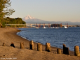 Images, 2005, Looking upstream from Wintler Park, Washington, with Mount Hood, Oregon
