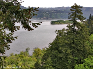 Image, 2006, Columbia River as seen from the Columbia Gorge Hotel, click to enlarge