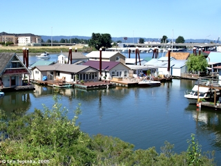 Image, 2006, North Portland Harbor, from Tomahawk Island, Oregon, click to enlarge