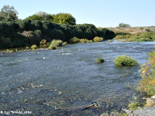Image, 2006, Umatilla River, Oregon, looking upstream, click to enlarge
