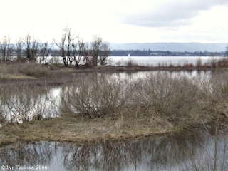 Image, 2006, Columbia River from Water Resources Education Center, Vancouver, Washington, click to enlarge