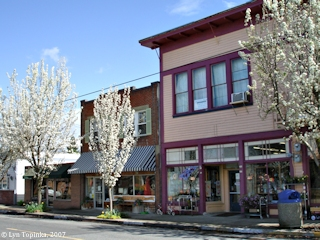 Image, 2007, Main Street, Ridgefield, Washington, click to enlarge