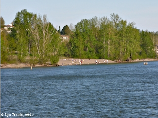 Image, 2007, Beach, Wintler Park, click to enlarge