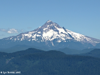 Image, 2008, Mount Hood from Larch Mountain, click to enlarge