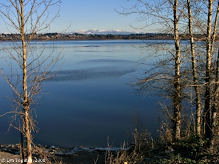 Image, 2008, Vancouver Lake, Washington, click to enlarge