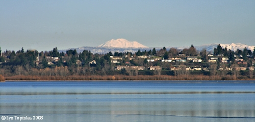 Image, 2008, Mount Adams, Vancouver Lake, Washington, click to enlarge
