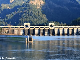 Image, 2009, Bonneville Dam, on the Columbia River, click to enlarge