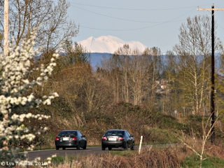 Image, 2010, Mount Adams as seen from Blurock Landing, click to enlarge