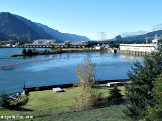 Image, 2010, Bonneville Dam from upstream, Washington side, click to enlarge