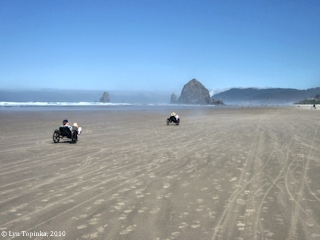 Image, 2010, Cannon Beach, Oregon, click to enlarge