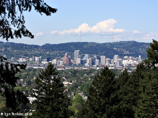 Image, 2010, Portland, Oregon, from Mount Tabor, click to enlarge