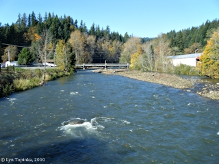 Image, 2010, Rock Creek, Skamania County, looking upstream, click to enlarge