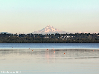 Image, 2010, Mount Hood, Vancouver Lake, Washington,  click to enlarge