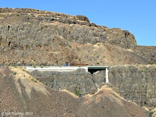 Image, 2011, Basalt near Horsethief Butte, Washington, click to enlarge
