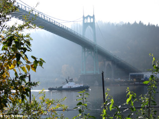 Image, 2011, Willamette River and the St. Johns Bridge, click to enlarge