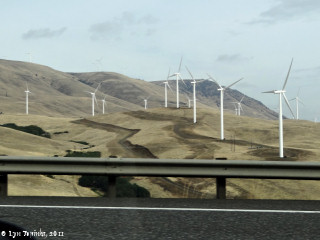 Image, 2011, Wind Turbines, click to enlarge